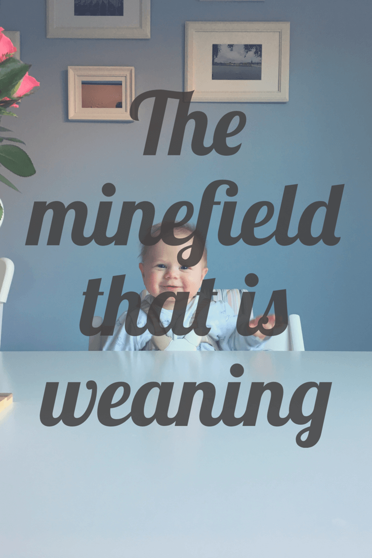 weaning, babyled weaning, puree weaning, single veg puree weaning, how to start weaning