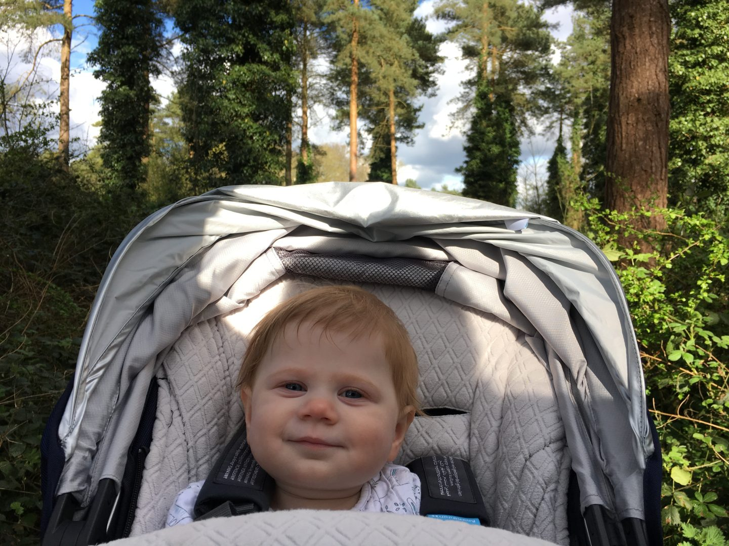 Little M in her pram walking in the woods