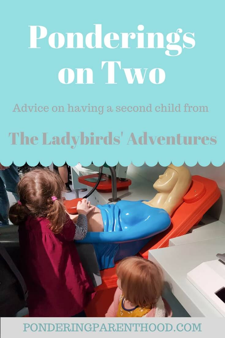 Advice on having a second child from The Ladybirds' Adventures