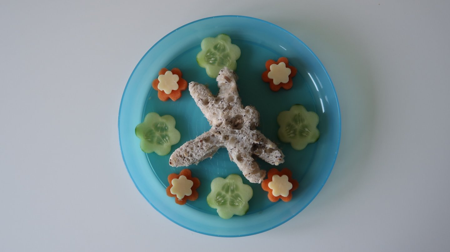 Tuna mayonnaise dragonfly shaped sandwich surrounded by carrot, cucumber and cheese flowers.
