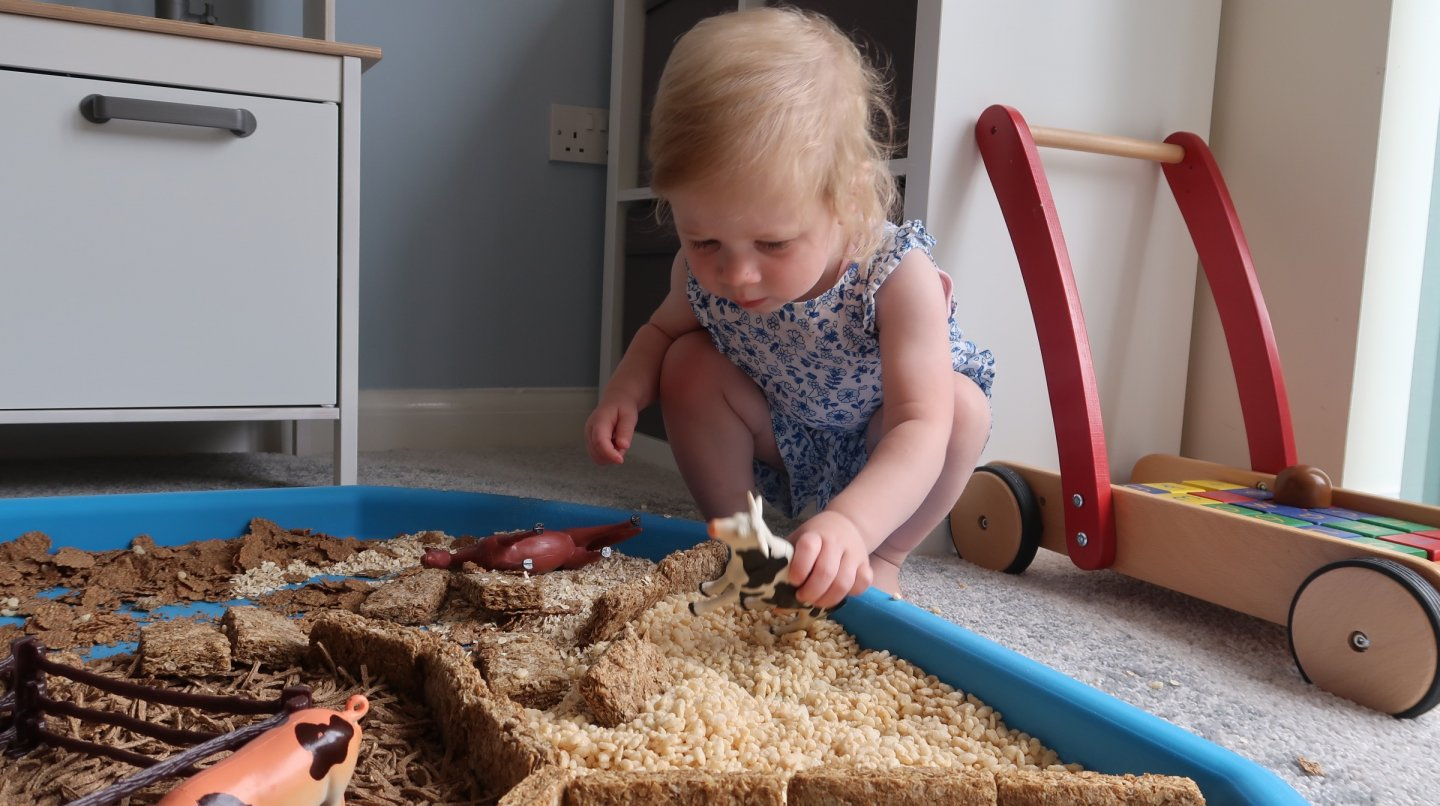 EYFS sensory tuff tray. Toddler playing with toy cow.