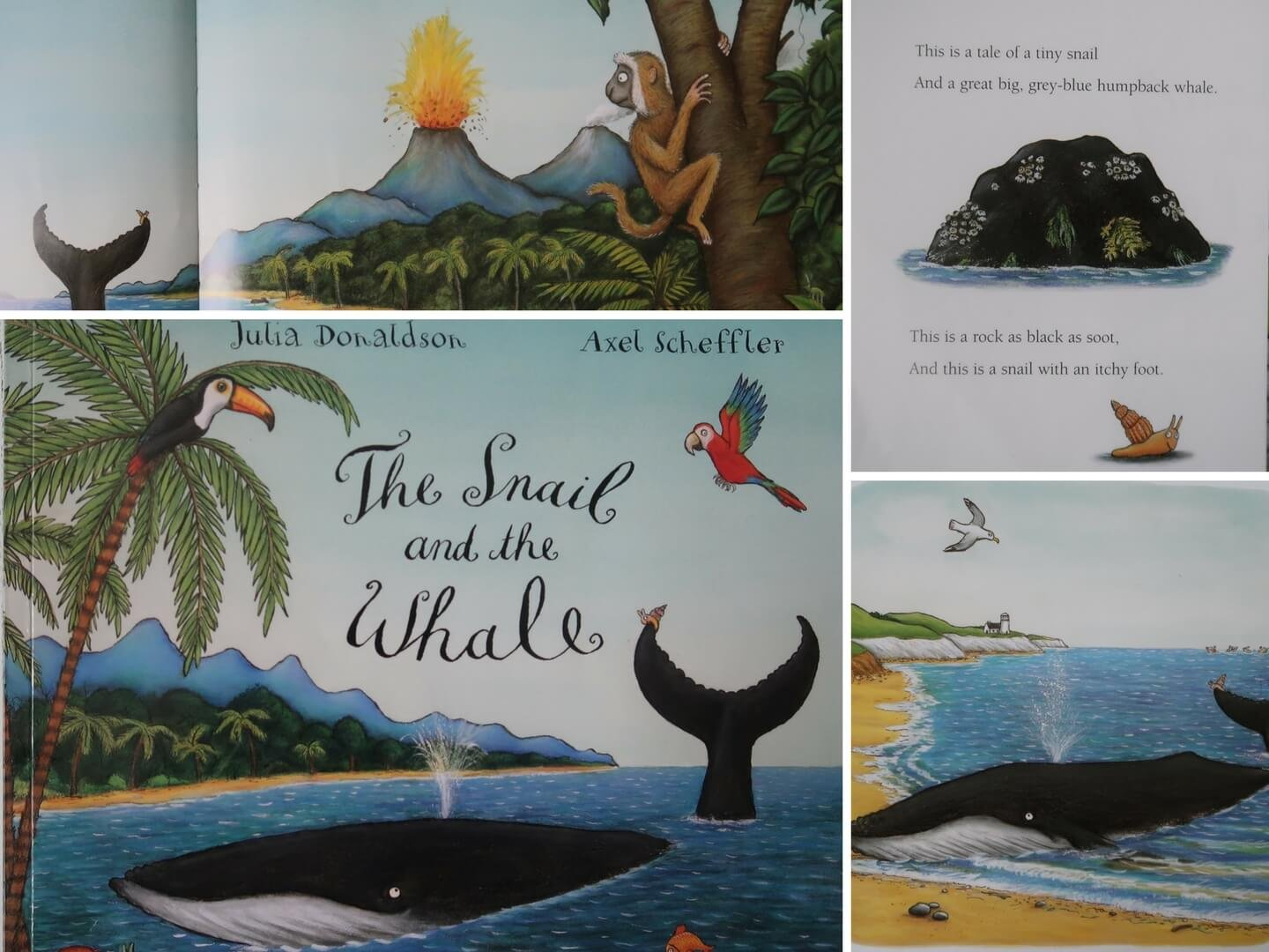 The Snail and the Whale by Julia Donaldson - easy EYFS rock painting craft