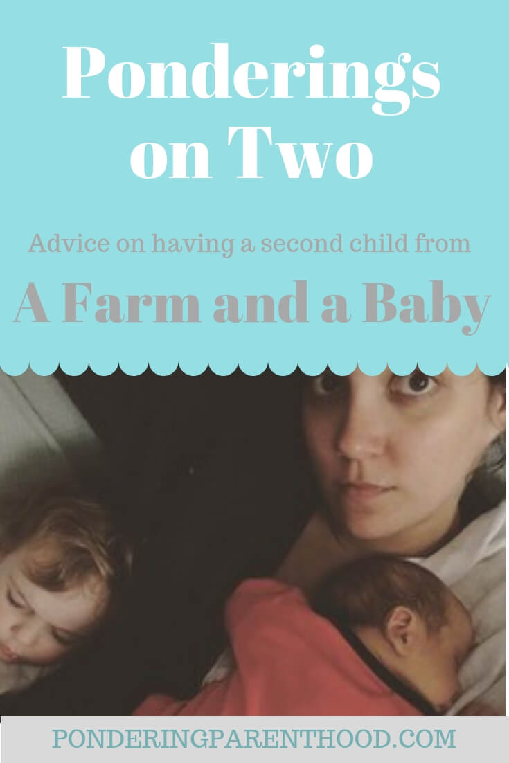 Second Baby Advice From A Farm And A Baby