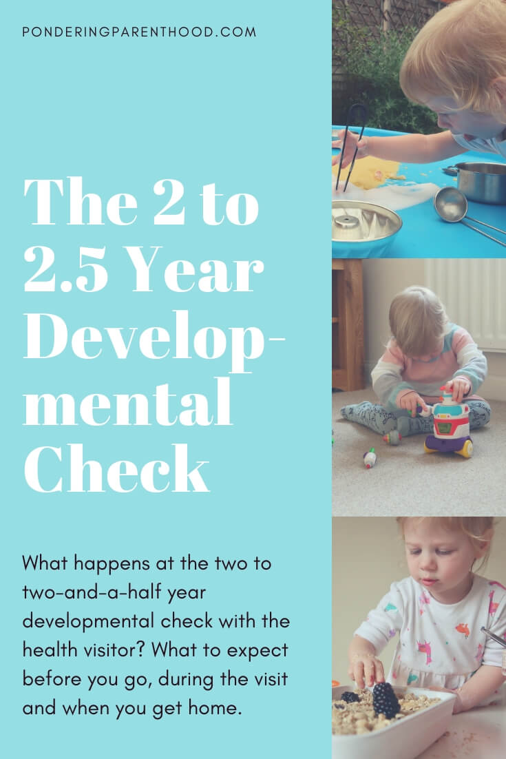 The Two Year Developmental Check