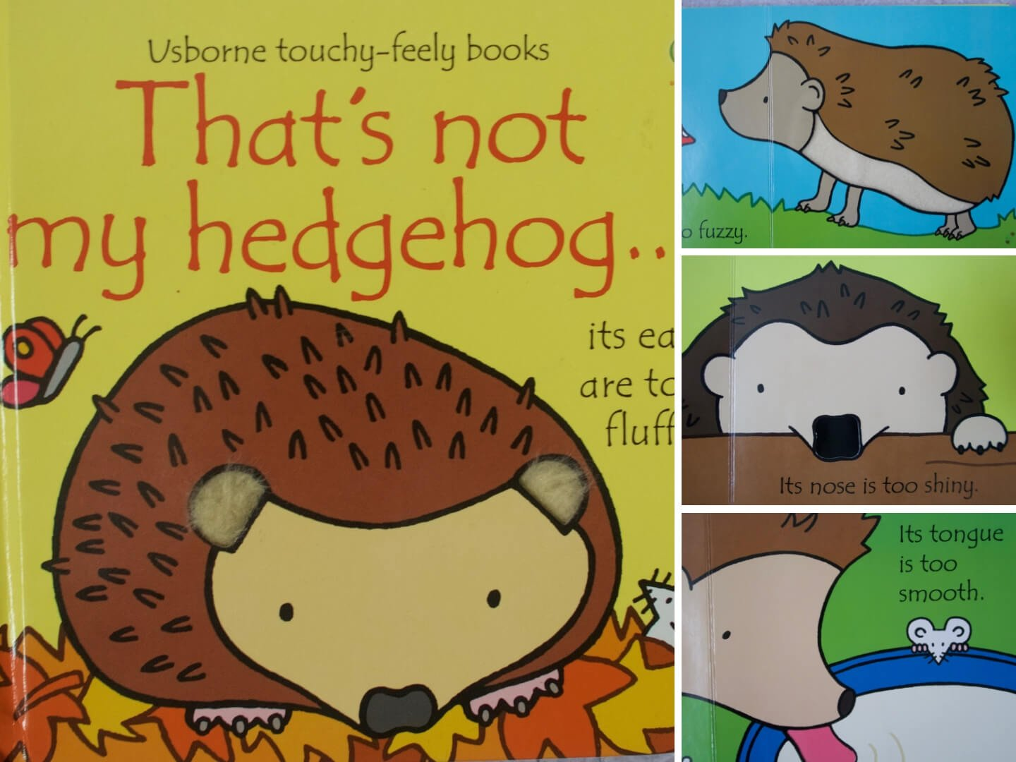 That's not my hedgehog by Fiona Watt.