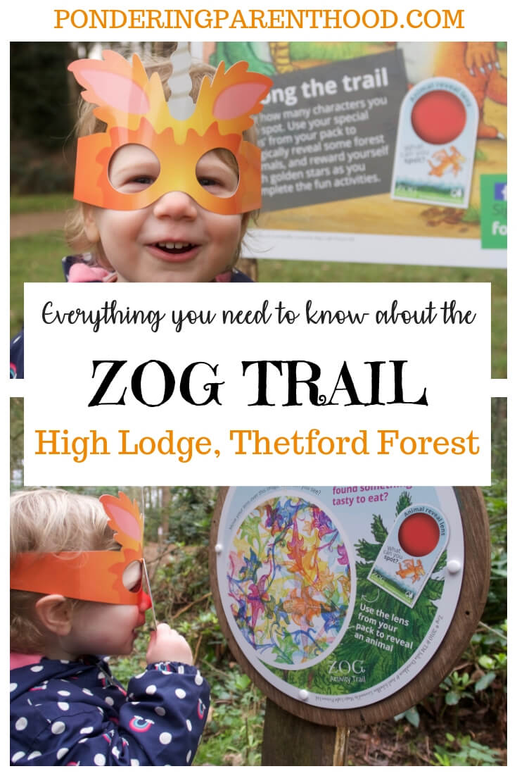 Planning a visit to the Zog Trail at High Lodge, Thetford Forest? Here's everything that you need to know! #Zog